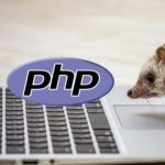 【変数とは】初心者が最短でPHPを使えるようになるための実践的な学び方